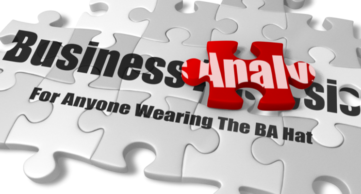 Business Analysis Skills: A U201cMust Haveu201d For Any Profession » Business  Analysis Experts